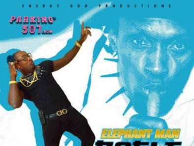ELEPHANT MAN BOGLE MOVE FULL PROMO ENERGY GOD PRODUCTIONS